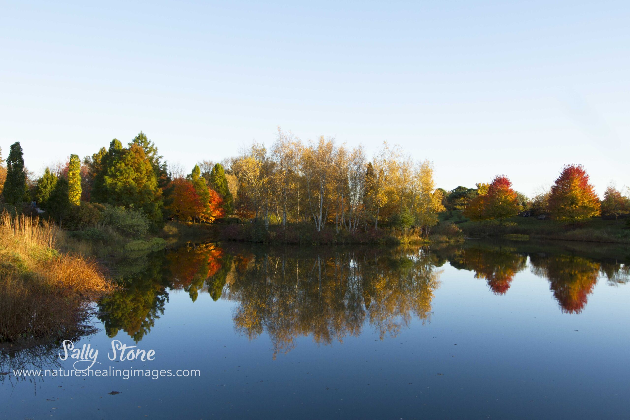 Autumn Landscape Reflections