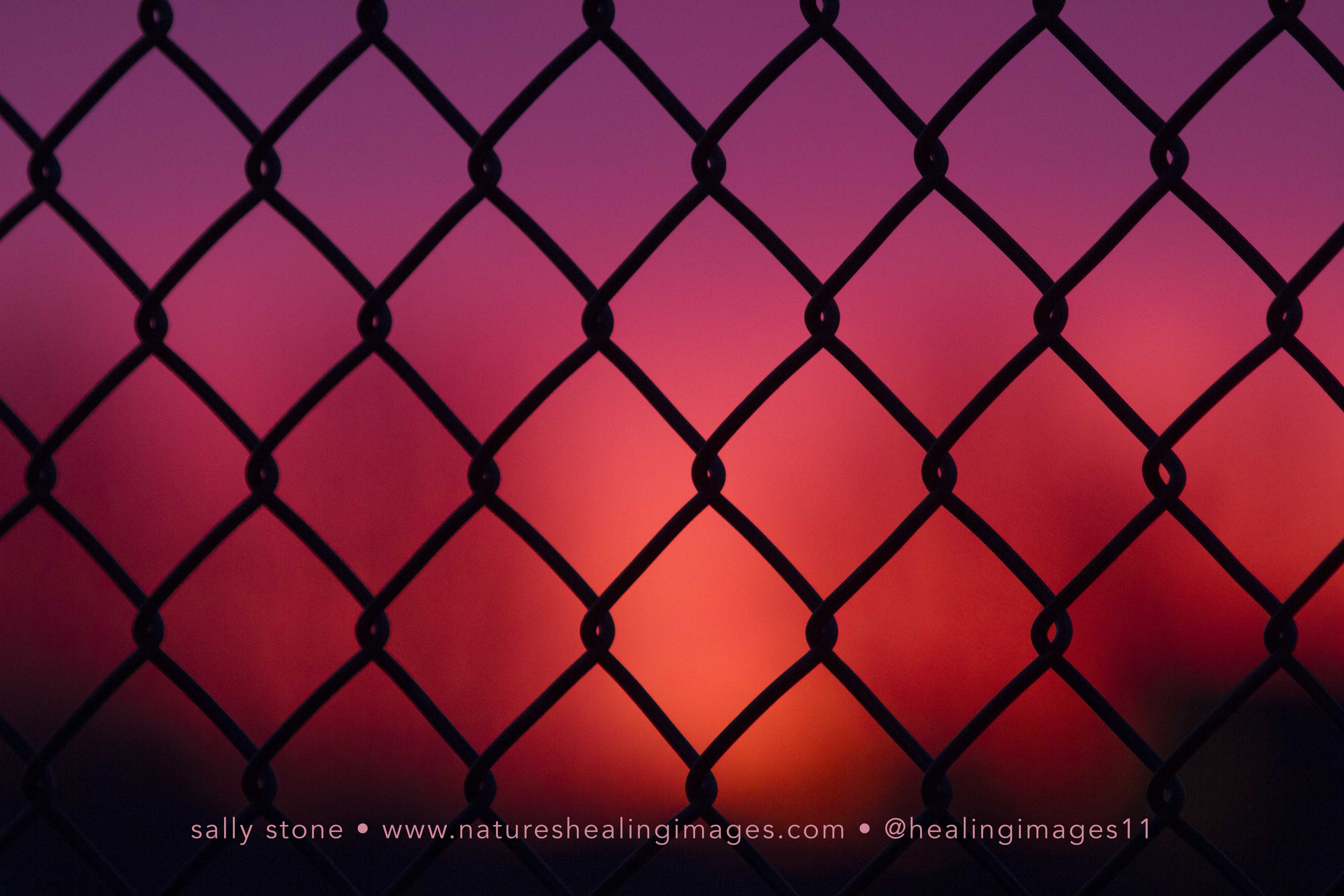 Sunset-through-a-fence